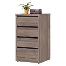 綠活居 菲迪現代風2尺四斗櫃/收納櫃-60x49x102.5cm免組