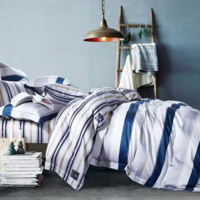 Saint Rose頂級精緻100%天絲床罩八件組(包覆高度35CM)-夏蘭 雙人