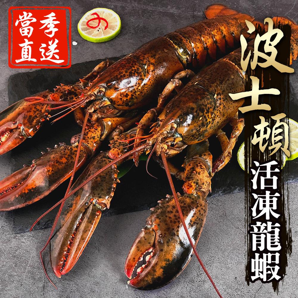 【海鮮王獨家進口】當季活凍波士頓大龍蝦 3隻組(500g±10%/隻-產地新鮮直送)