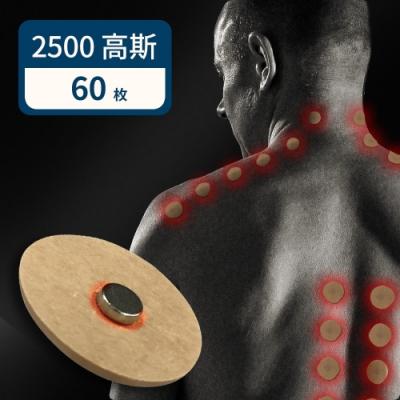 家適帝 台灣製加強版舒緩磁氣絆2500G高斯(10枚x6包)