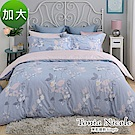 Tonia Nicole東妮寢飾 柔杏薇光100%精梳棉兩用被床包組(加大)