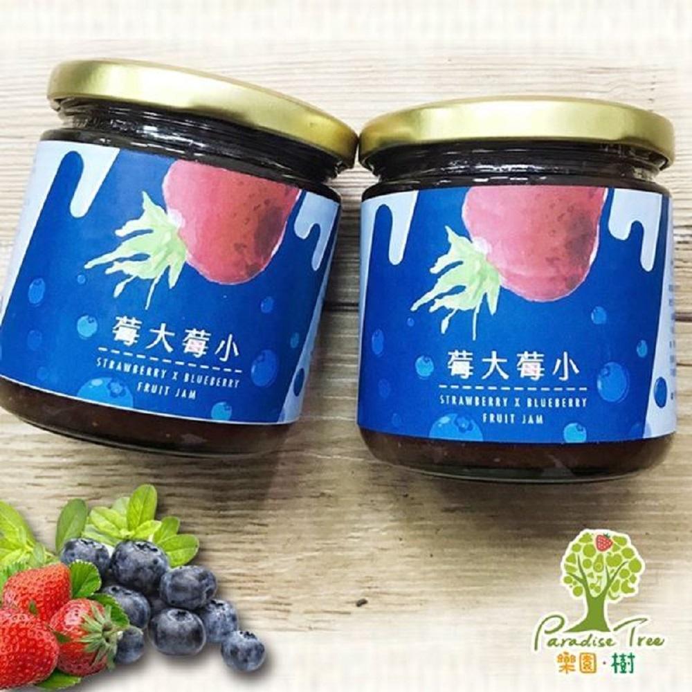 樂園樹 莓大莓小-無農藥草莓藍莓雙果醬(共兩瓶)