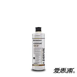 EVERPURE 愛惠浦 公司貨 OCS2淨水濾芯