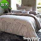 (活動)Tonia Nicole東妮寢飾 嵐山小徑環保印染精梳棉兩用被床包組(加大)