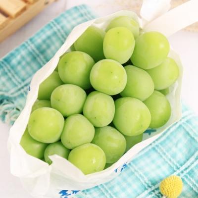 愛上水果 日本頂級麝香葡萄8-9串原裝箱x1箱(約5kg/原裝箱)