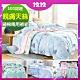 (雙12)AniaCasa 親膚天絲兩用被床包組 雙/大均價