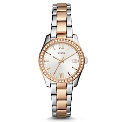 FOSSIL 輕奢華晶漾雙色不鏽鋼女錶(ES4372)-32mm