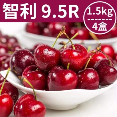 [甜露露]智利櫻桃9.5R 1.5g 4盒入(28mm)
