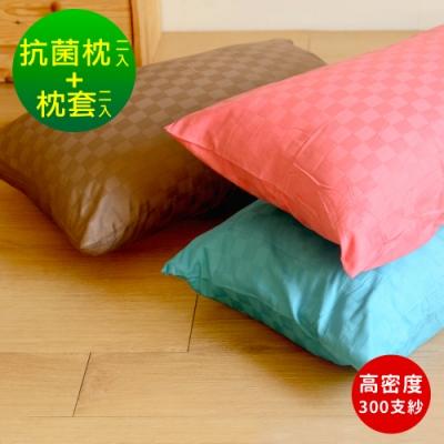 (送枕套X2)Embrace英柏絲 抗菌枕2入+贈品精梳棉枕套2入(MIT高密度300支紗)