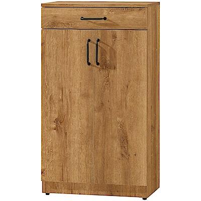 文創集 瑞米時尚2尺二門單抽鞋櫃(二色)-60.5x32x108.5cm免組
