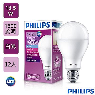 PHILIPS飛利浦-柔光網點 13.5W 白光 1600流明 6500K (12入)