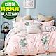 9 Design 熱情沙漠 單人三件組 100%精梳棉 台灣製 床包被套純棉三件式 product thumbnail 1
