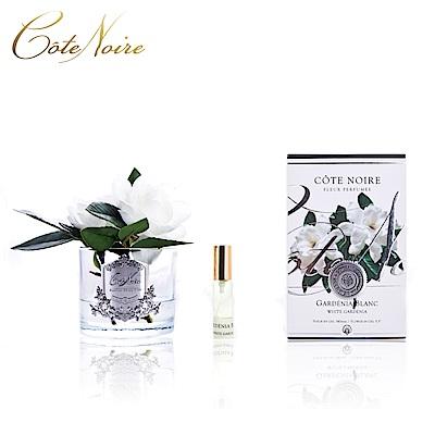 法國 CoteNoire 蔻特蘭 雙朵槴子花香氛花透明瓶