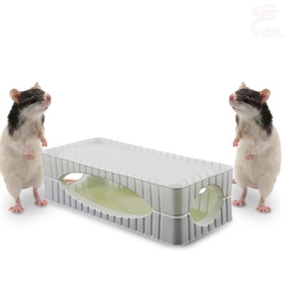 金德恩 台灣製造專利款 二盒3D超黏力捕鼠盒2片裝/盒