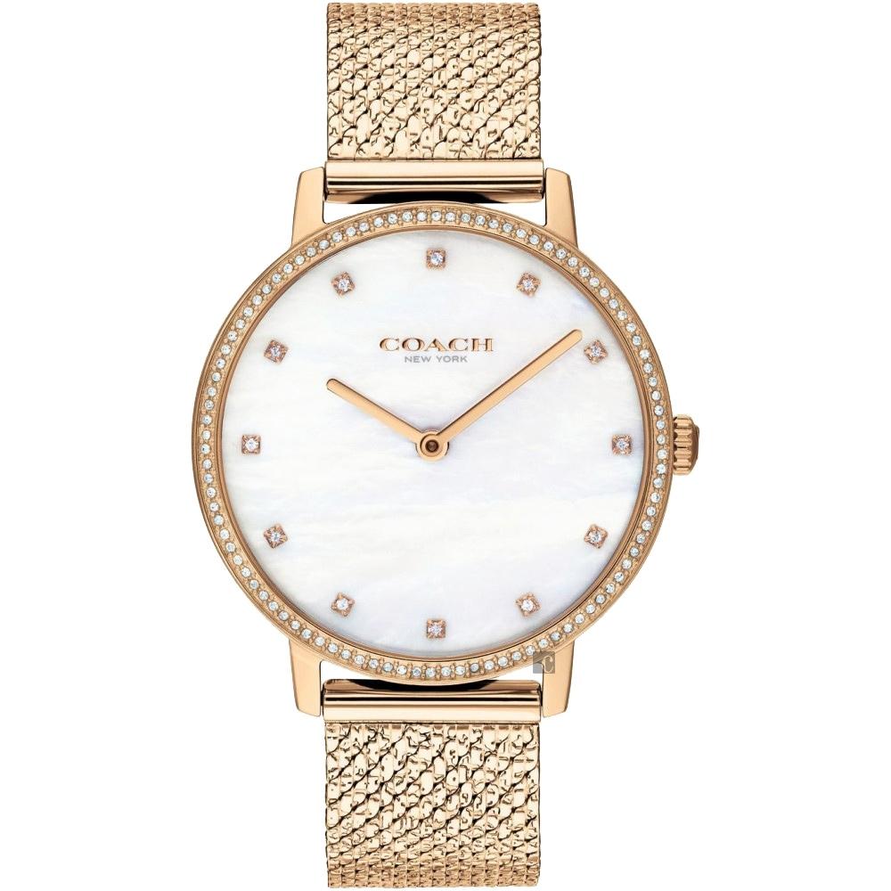 Coach Delancey 紐約晶鑽米蘭帶手錶(CO14503360)-34mm
