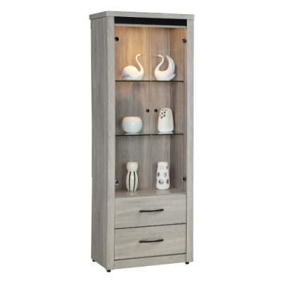 【AT HOME】簡約現代2.2尺鋼刷淺灰色展示櫃/客廳櫃/收納櫃(清心)