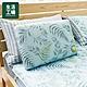 【618全店慶 全館5折起-生活工場】沐夏森林涼感低反彈枕-藍 product thumbnail 1
