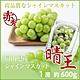 【天天果園】日本岡山晴王麝香葡萄1串禮盒(每串約600g) product thumbnail 1