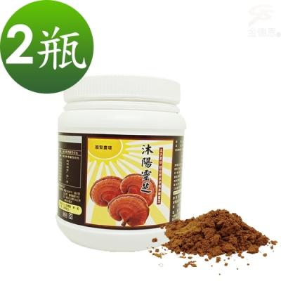 金德恩 台灣製造 2瓶SGS認證沐陽養生食品松杉破壁靈芝粉末1瓶100g/附贈小湯匙
