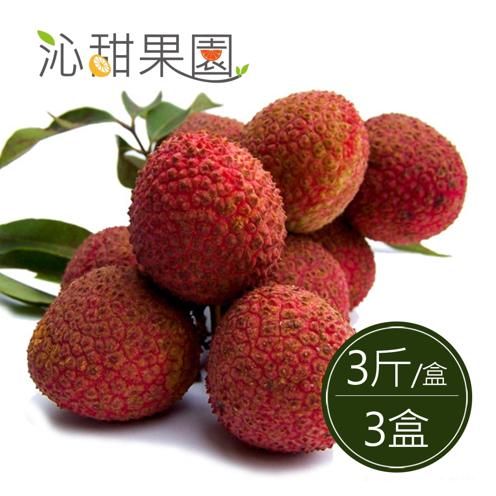 沁甜果園SSN‧高雄大樹玉荷包-粒果3斤裝/盒(共3盒)