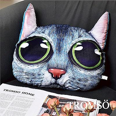 TROMSO 大眼貓星人抱枕-C401碧眼藍貓