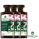 波蘭Herbal Care 牛蒡養髮植萃調理洗髮露(調節頭皮脂腺)330ml(3瓶組) product thumbnail 2