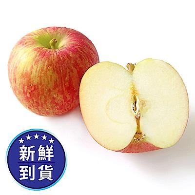 【果物配】有機富士蘋果.紐西蘭/美國/智利(3kg/15~23顆)