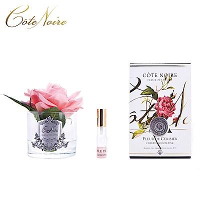 法國 CoteNoire 蔻特蘭 大朵粉紅玫瑰香氛花透明瓶