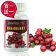 買一送一【Healthy Life加力活】高濃縮蔓越莓加強膠囊(60顆/瓶) product thumbnail 1