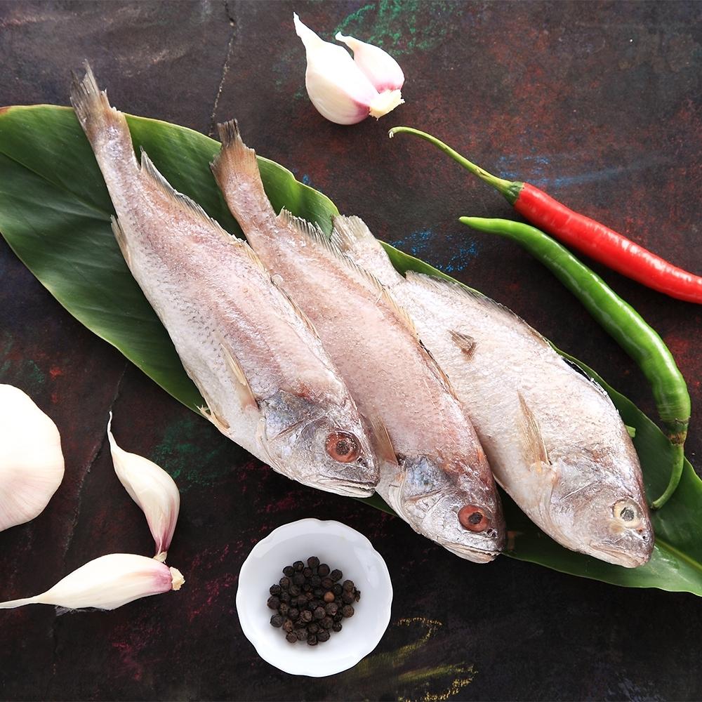 (滿899免運)【上野物產】野生白口魚 ( 135g土10%/隻 ) *1隻