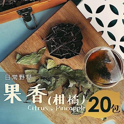日常野草 芬芳清甜 果香青草茶(5gX20包)(10包/盒,共2盒)