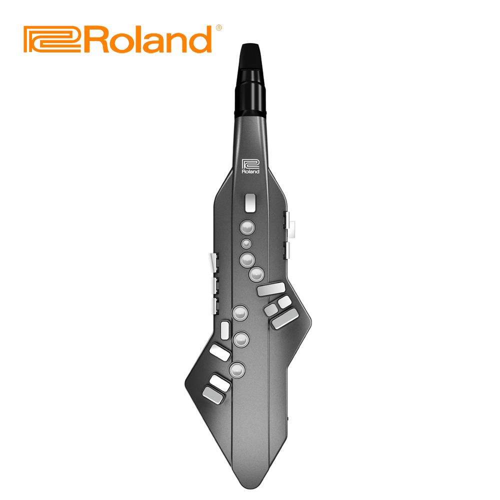 ROLAND AE-05 數位吹管