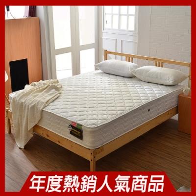 雙人加大6尺-飯店用高蓬度3M抗菌防潑水獨立筒床墊-Ally愛麗
