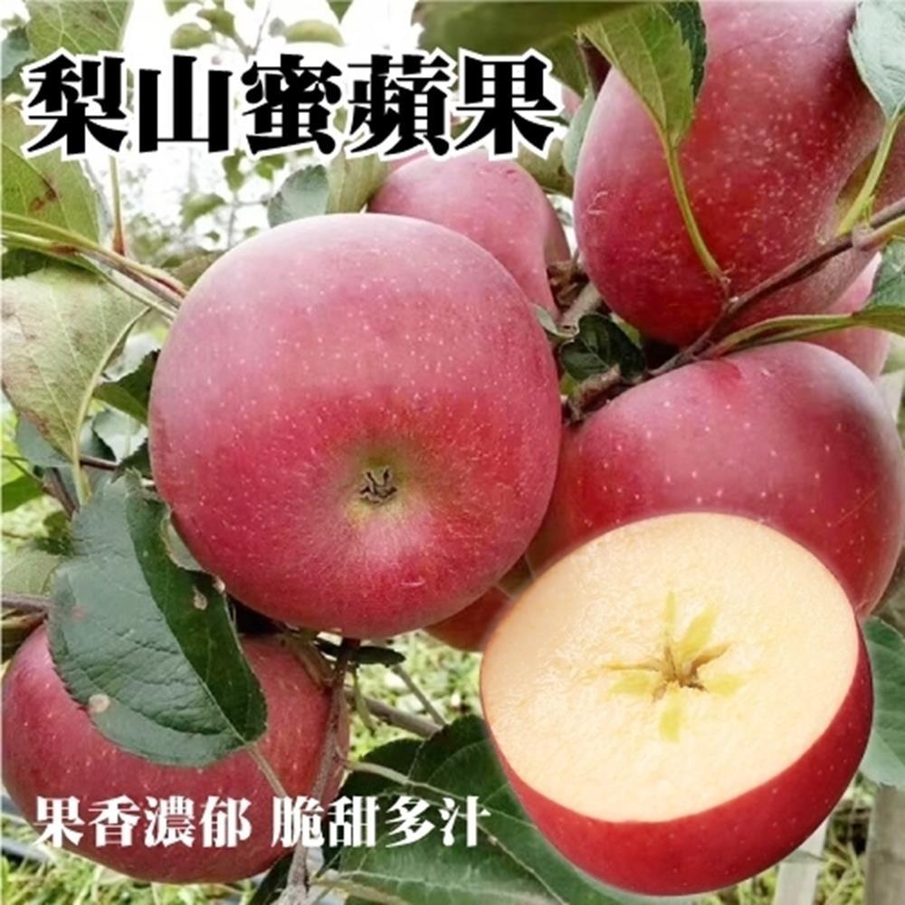 【果農直送】梨山高山蜜蘋果大顆4斤