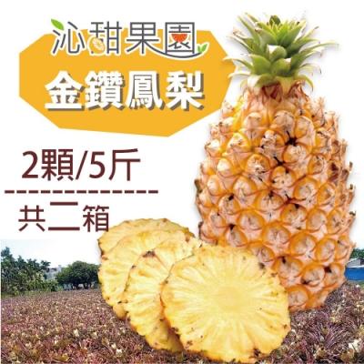 沁甜果園SSN‧金鑽鳳梨(2顆/5台斤,共二箱)