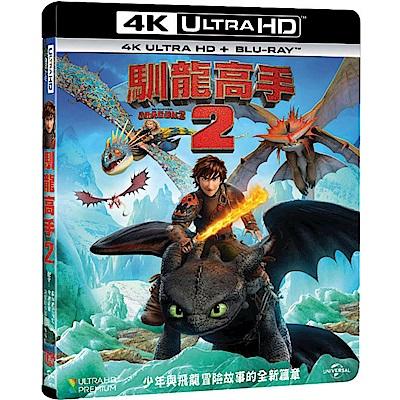 馴龍高手2 (UHD+BD 雙碟限定版)