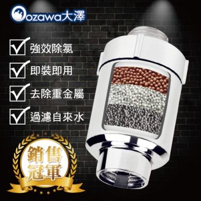 OZAWA 大澤 家用淨化活水沐浴過濾器淨水器 3入