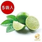 Global Fresh 酸甜滋味屏東有籽檸檬 (600g/袋,5袋/箱)