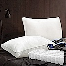 Hilton 希爾頓 VIP 6D立體透氣天絲獨立筒枕 1入