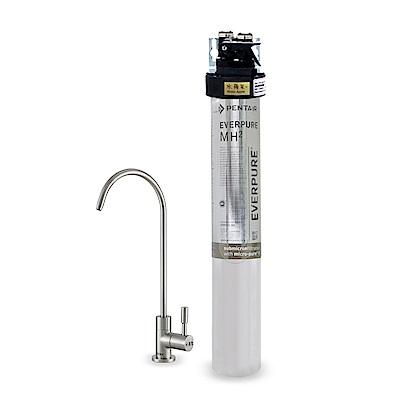 水蘋果公司貨 EVERPURE QL3-MH2 單道淨水器