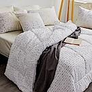 戀家小舖 / 雙人棉被  可水洗暖冬被  科技羽絲絨  台灣製