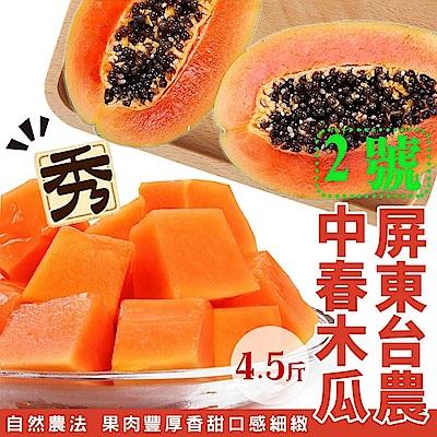 【天天果園】屏東台農2號中春木瓜禮盒 x4.5斤 (約4-5顆)