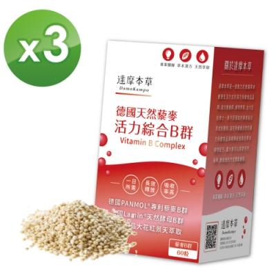 【達摩本草】專利天然藜麥綜合B群x3盒 (60粒/盒)《長效吸收、活力不斷電》