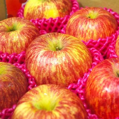 【鮮果日誌】智利空運富士蘋果(精美禮盒8顆入)