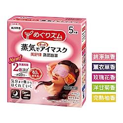 美舒律 蒸氣眼罩 (5片裝/盒) (共5款可選)