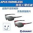 GIANT APUS FRAMELESS 無框太陽眼鏡 灰色增艷鏡片