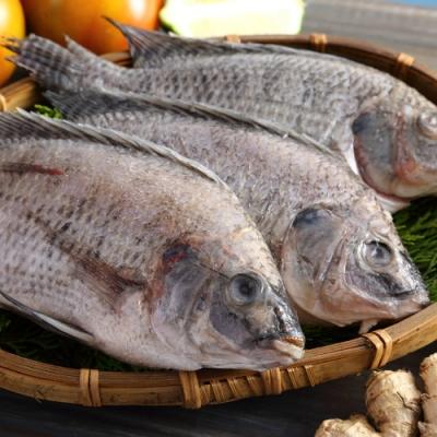 (滿899免運)【上野物產】嚴選台灣鯛魚 ( 250g土10%/隻 ) *1隻