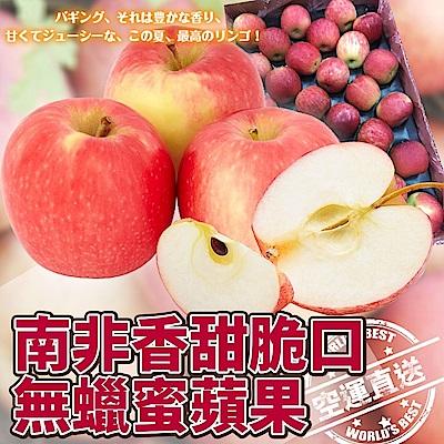 【天天果園】南非無蠟蜜蘋果(每顆約120g) x12顆