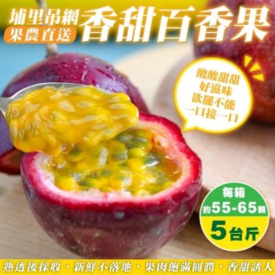 【果農直配】埔里吊網香甜百香果5斤(約55-65顆)