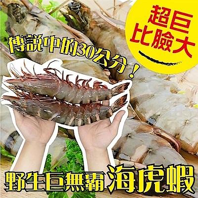 (滿699免運)【海陸管家】巨無霸比臉大海虎蝦(每隻150g-200g) x1隻